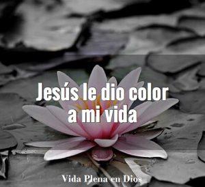 Jesus le da color Jesus le da color 13707009 1607738186191229 853717635 n