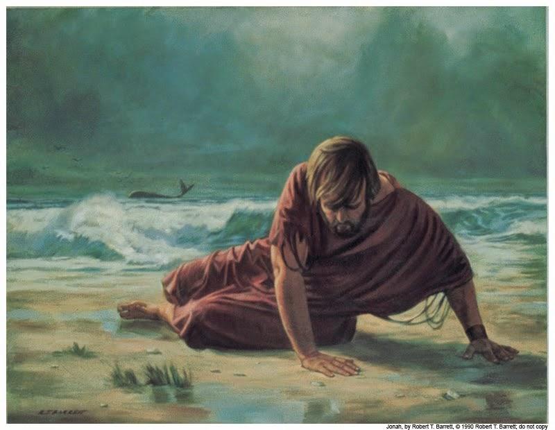 jonas jonas Jonas jonas en la playa 2