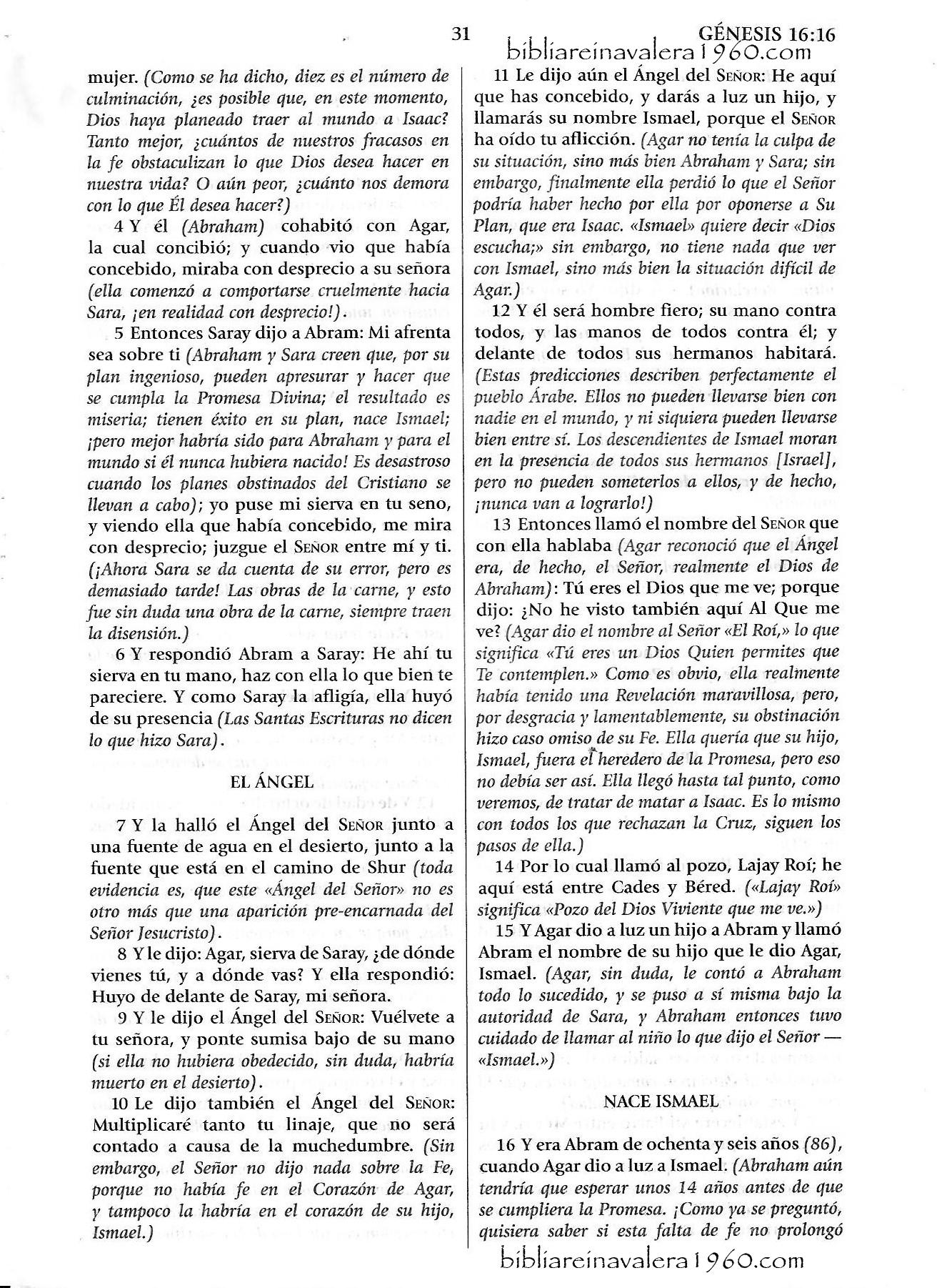 Genesis 16 Explicacion 31