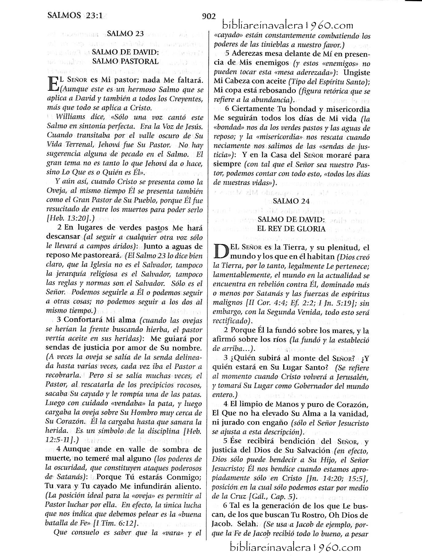Salmos 24 Explicacion Biblia Reina Valera